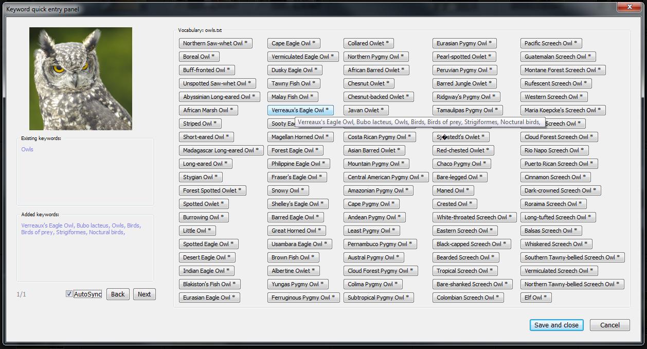 owls Tab Delimited Format Example on spreadsheet format, microsoft excel format, xml format, text format, pdf format, windows help format, portable document format, rtf format, data interchange format, csv format, endnote format, ascii format, word format,
